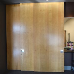 Insulated Exterior Sliding Barn Door